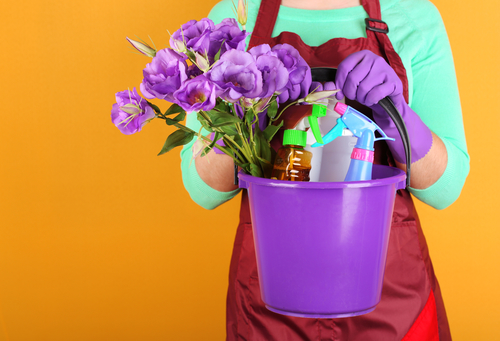 Spring cleaning hacks & tips to make the job easier   Insure