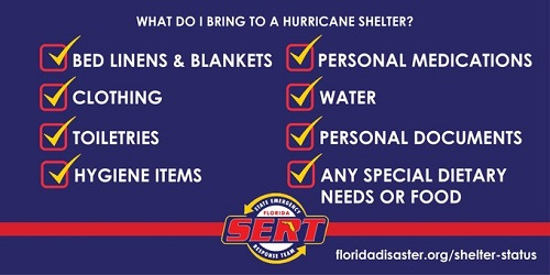 chart - what to bring to an emergency shelter
